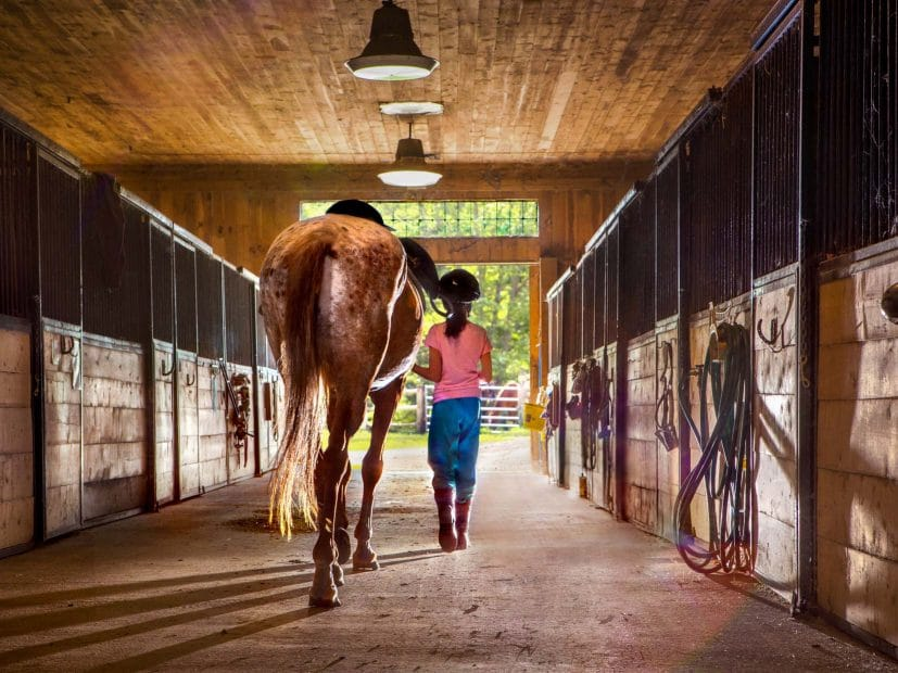 girl walking through a stable with a horse